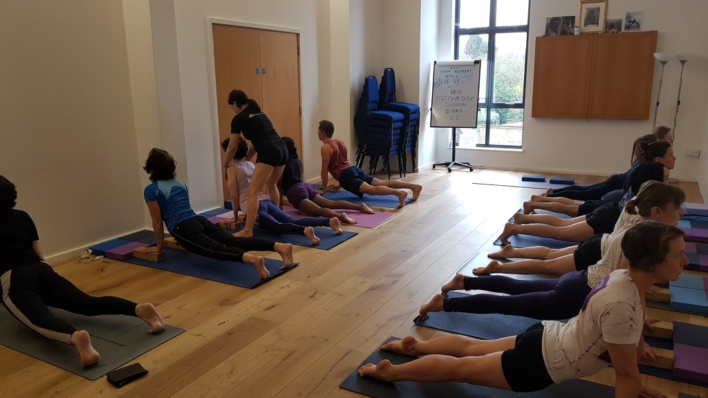 Iyengar Yoga Forest Hill Your Local Daily Online And Studio Classes