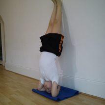 #yogaforkids #yogaforchildren #yoga4kids #yogainforesthill #iyengaryoga #onlineyoga #iyengaryoga #robbieyoga #graziayoga
